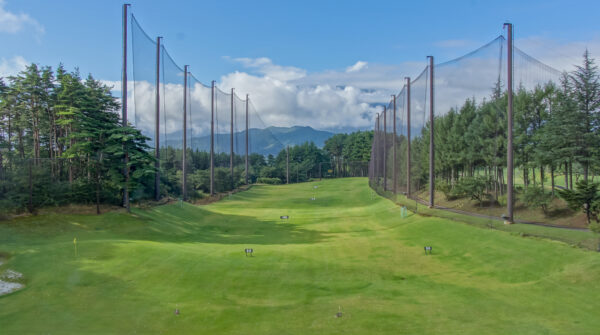 Ball Stopping Nets Timber Poles