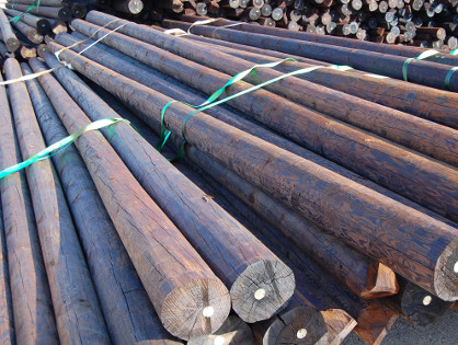 ball stopping net timber poles